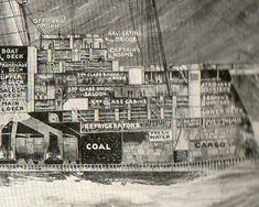 Engineering Art: Cross Sections of the HMS Olympic and Mauretania Cunard Ships, Rms Mauretania, Cross Section, Lay Outs, Lest We Forget, Rms Titanic, Science Books, 12 Days, Olympics