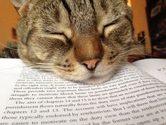 Reading Helper