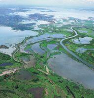 La depresión Momposina y la región de la Mojana, por recibir aportes del Magdalena, el Cauca, el San Jorge y el Cesar, son áreas muy importantes para la regulación fluvial y lacustre en el Bajo Magdalena.
