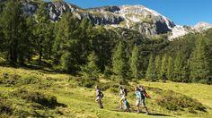 Mit Kindern in die Berge  Die besten Hütten für den Familienausflug
