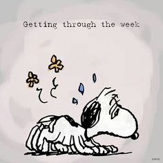 Snoopy and the Peanuts gang - Timeline Peanuts Quotes, Snoopy Quotes, Peanuts Images, Peanuts Cartoon, Peanuts Snoopy, Snoopy Cartoon, Labor Day Quotes, Snoopy Pictures, Snoopy Images