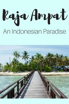 Travel Raja Ampat and discover the best islands in Indonesia, between world class diving and idyllic beaches