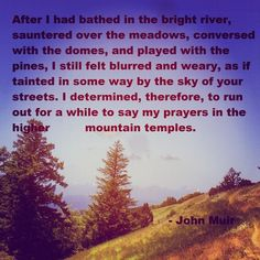 John Muir Quote Lessons Learned In Life, Life Lessons, Pretty Words, Beautiful Words, Mountain Qoutes, Aldo Leopold, John Muir Quotes, Bestest Friend, Fight The Good Fight
