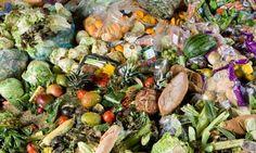 Waste (Documental) No solo se pierde una tercera parte de la comida que se produce, sino que también se pierden millones de litros de agua dulce, tierra, energía etcétera.