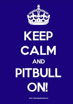 Pitbull Take Over Night -2012!