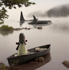 ORCAS AND THE GIRL