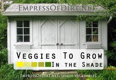 10 tasty vegetables that thrive in (partial) shade.