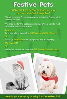 Share your cute pet photos with Galt and win!