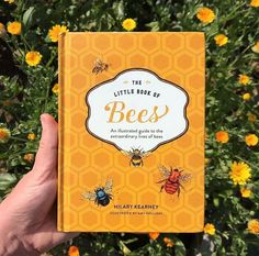 Bee Life Cycle, Honey Uses, Stingless Bees, Types Of Honey, Bee Family, Save The Bees, Girl Next Door, Little Books, Bee Keeping