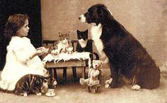Extremely Weird Vintage Photos The tea party . I don't find this weird at all though.The tea party . I don't find this weird at all though. Animals And Pets, Cute Animals, Party Animals, Animal Party, Weird Vintage, Vintage Tea, Tier Fotos, Vintage Pictures, Vintage Children Photos