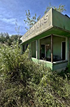 One of many gator theme parks, abandoned in the sugar fields of South Florida.