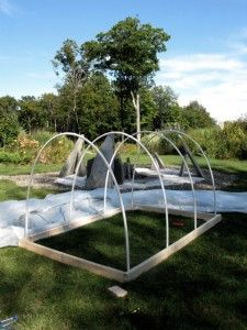 DIY small hoophouse, garden cover w/ netting, keep out deer/ rabbits