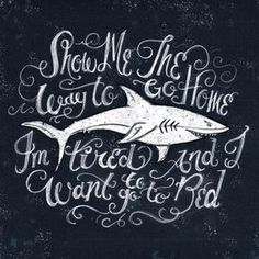 typography shark
