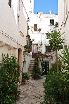 Locorotondo ~ Puglia, Italy, province of Bari Regions Of Italy, Southern Italy, Bari, Roman Empire, Sicily, Travel Pictures, Countryside, Scenery, Europe