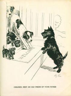 Dog Print 1938 Scottish Terrier Puppies Vintage Funny   eBay