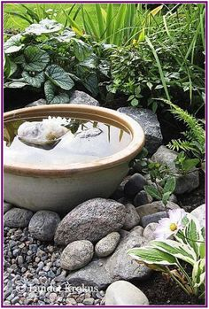 25+ awesome backyard ponds and water garden landscaping ideas 00025 • winzipdownload.org