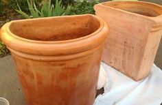 Save Water, Save Money: Seal Terracotta Pots With A Household Product