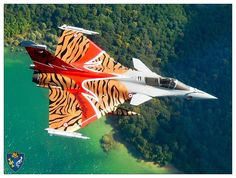 Rafale Tiger from Tburg Aircraft Parts, Fighter Aircraft, Airplane Art, Airplane Flying, Military Jets, Military Aircraft, Modern Fighter Jets, Rafale Dassault, Photo Avion
