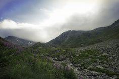 Gd St Bernard - Swiss Alps Swiss Alps, Gd, Places To Go, Explore, Mountains, Nature, Travel, Viajes, Naturaleza