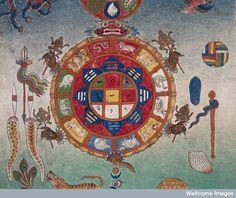 Bloodletting chart, Tibet