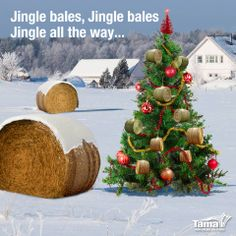 Jingle Bales! Love this image from Tama - Farm Grown Solutions