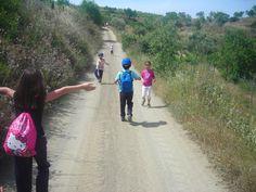 Els Camins a l'escola:  https://sites.google.com/a/xtec.cat/els-camins-a-l-escola/home