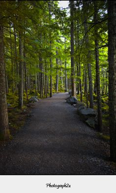 Path to Brandywine Falls, Canada