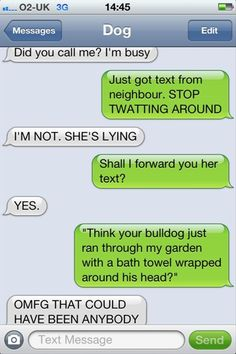can't get enough of texts from dog.