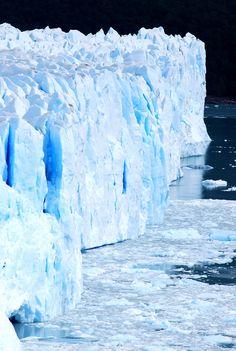 Les calottes glaciers n'a pas beaucoup de végétation. S'il n'y a pas de végétation, beaucoup des animaux sont des carnivores. Si nous ne prenons pas soin de notre terre, tous le végétation peut disparaître avec les animaux qui doit manger les plantes. Finalement, les animaux mangent l'uns et l'autres avant que c'est seulement les humaines et les humaines doivent s'entre-tuer.