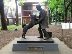 Hachiko Statue with his master. Read complete Hachiko story: a true and legendary example of a loyalty.