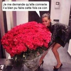 Qu'elle connerie il a bien pu faire… image drole humour – What bullshit he did well … funny picture humor – the รด Funny Images, Funny Pictures, Image Fun, Liam Neeson, Funny Valentine, Rose Bouquet, Bullshit, Rose Wedding, Red Roses