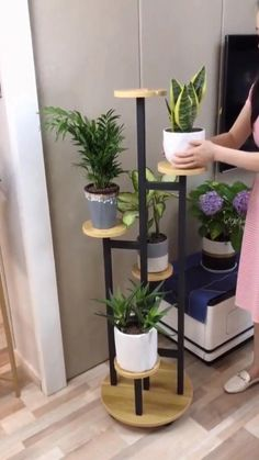 Indoor Plant Shelves, Indoor Plant Wall, Indoor Plants, Shelves With Plants, Indoor Plant Stands, Hanging Plants, Wooden Plant Stands, Diy Plant Stand, Garden Plant Stand