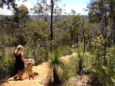 Mundaring Weir - Buggybuddys guide to Perth Kids Picnic, Picnic Spot, Western Australia, Perth, Walks, Blessings, Countryside, The Good Place, Vineyard
