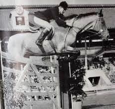 Show Jumping Horses, Concert, Concerts