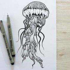 Jellyfish for Jeff #illustration #sketchbook #tattooflash #tattsketch #drawing #ink #penonpaper #linework #dotwork #blacktattoo #btattooing #blxckink #blackwork #pointillism #worldofpencils #onlyblackart #darkart #darkartists #equilattera #iblackwork #blacktattooart #design #micronpen #jellyfish #jellyfishtattoo #oceanlife #beachlife