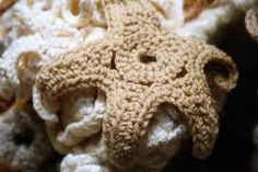 Image result for crochet coral reef