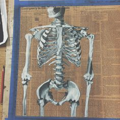 Skeleton drawing with charcoal pencils