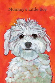 Mommy's Little Boy humorous dog magnet fluffy white by ursuladodge, $6.00