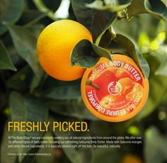 the body shop ads - Google Search