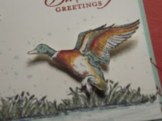 The Wilderness Awaits - Stampin' Up