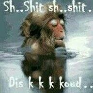 Shit dis koud. Good Morning Wishes, Good Morning Quotes, Cute Quotes, Funny Quotes, Hate Summer, Afrikaanse Quotes, Goeie Nag, Biblical Inspiration, Baboon