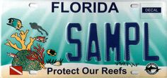 Protect Our Reefs License Plate.  Prettiest license plate ever made! I've had one since they came out.