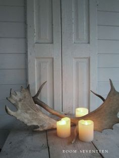 antlers and candles