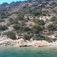 Let go and jump in ! 🏊🌊 #sailing #boatlife #sail #bodrum #bodrumpeninsula #aegeansea #aegeancoast #places #beautifulplaces #summer #summer2016 #vacation #holiday #Turkey #turkiye #türkei #nofilter #turkeyhomes #bodrumhomes #travel #Traveligram