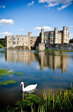 Leeds Castle is a castle in Kent, England, situated 5 miles southeast of Maidstone. A castle has been situated on the site since was once owned by an American born descendant (Olive Whitney) of my direct ancestors John & Eleanor Whitney. England Ireland, Kent England, England And Scotland, Chateau Medieval, Medieval Castle, Beautiful Castles, Beautiful Places, Palaces, Places To Travel