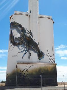 D'Vate – South Australia Silo Art Trail –Waikerie were the twenty fifth silos to be completed in Photo Credit Janet Gregory Street Art News, Murals Street Art, 3d Street Art, Street Art Graffiti, Graffiti Artists, New York Graffiti, South Australia, Western Australia, Sculpture Art