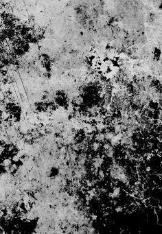 Free Stock Photo of Black & White Grunge Texture Dirt Texture, Texture Art, Overlays, Art Grunge, Emo Wallpaper, Digital Texture, Texture Images, Texture Mapping, Photoshop Design