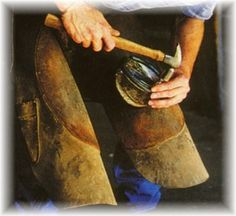 Horse training to help your farrier