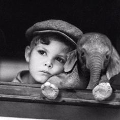 Someone PLEASE find me a mini elephant...of find me a scientist to create a mini elephant!!!! Thank you!