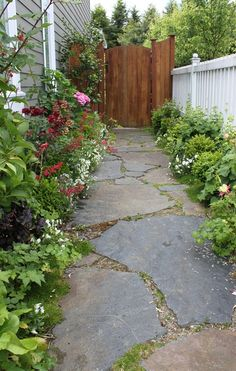 garden path, like the way the stone blends with natural elements.